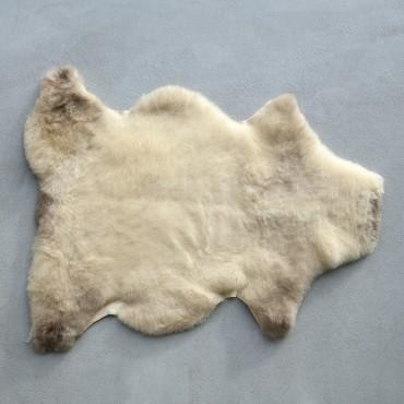 PEAU D'AGNELET laine courte et douce - Origine : Wallonie Belgique